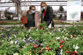 Alles blüht: Der Ansturm auf die Gartencenter hielt sich in Pforzheim in der ersten Woche nach der Neuöffnung noch in Grenzen. Dennoch sind die Geschäfte zufrieden mit der Resonanz.