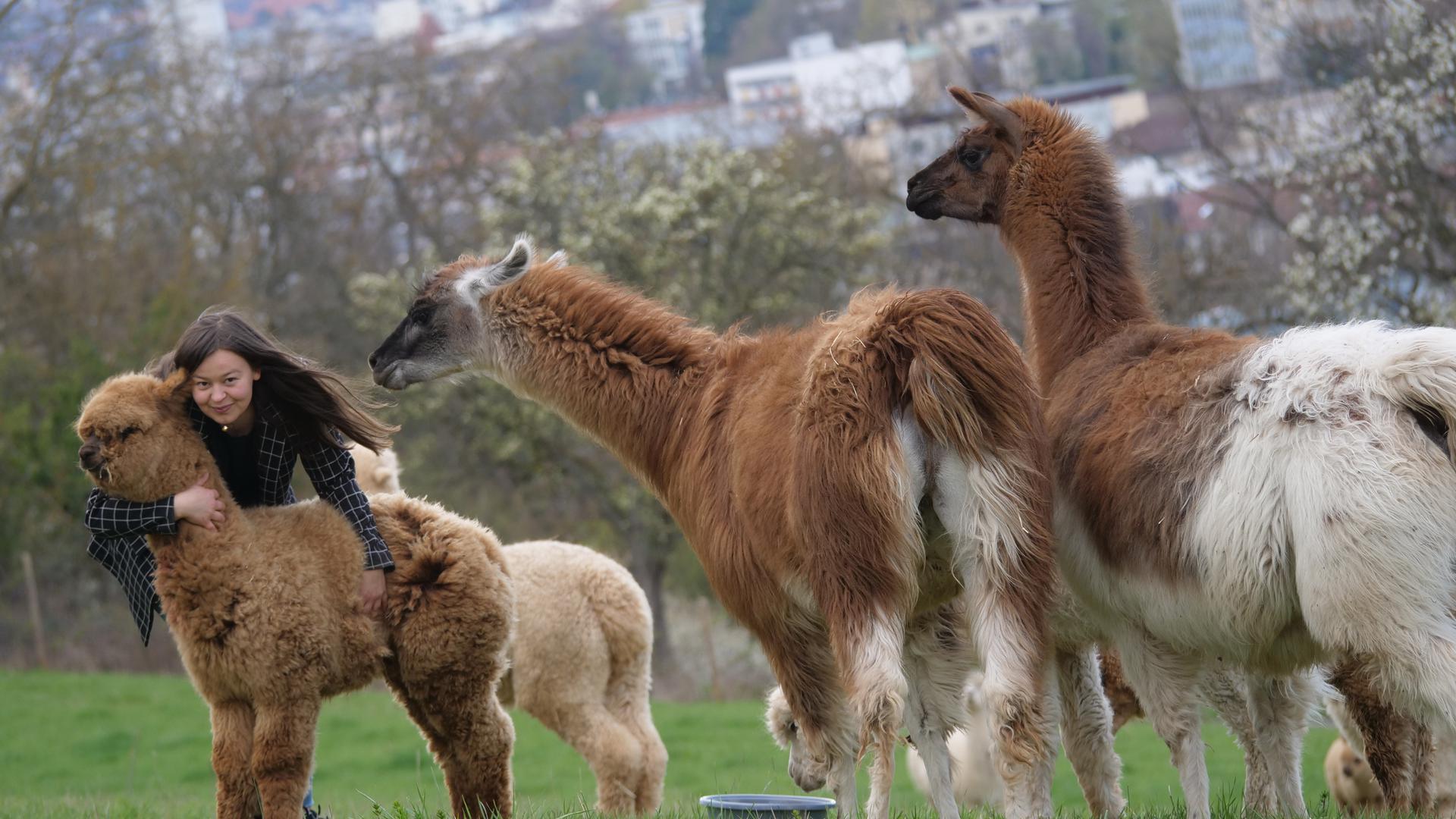 Sandra Baral und die Alpakas freuen sich schon darauf, wenn Wanderungen in größeren Gruppen ohne Corona-Sorgen wieder möglich sind