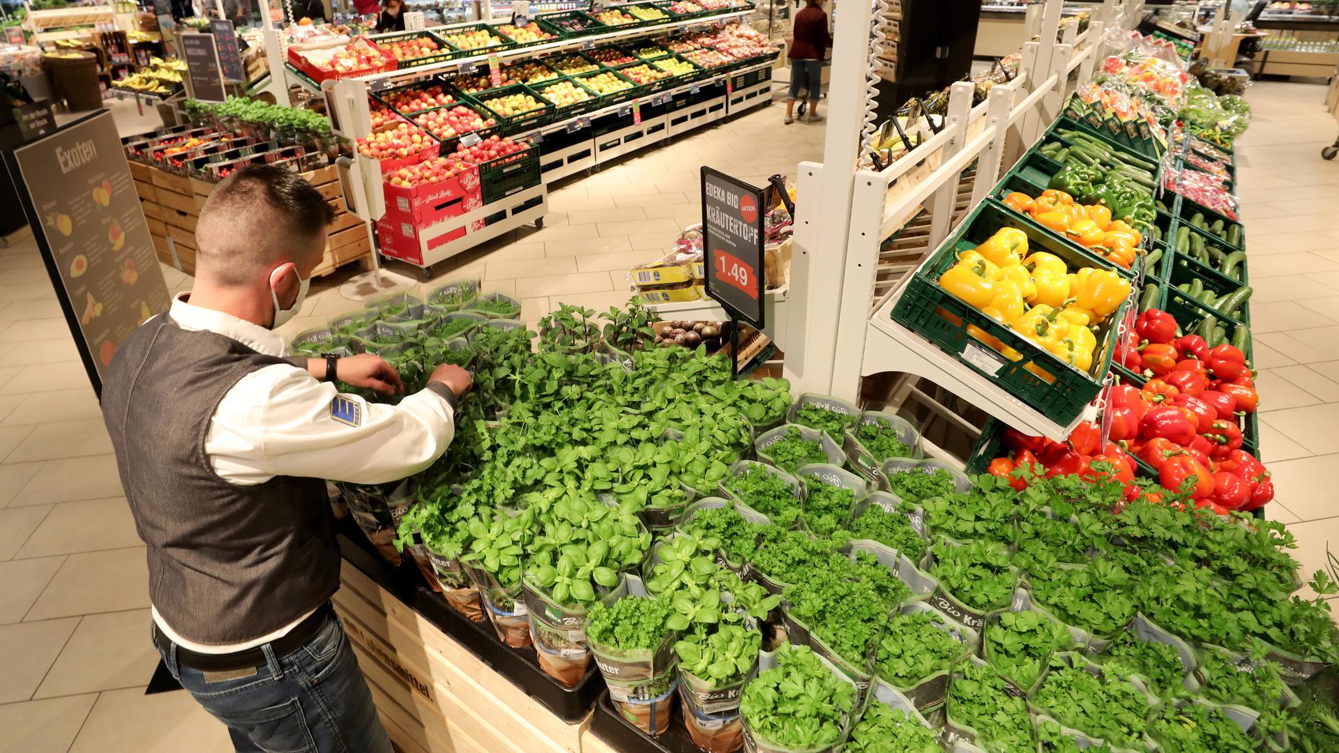 Die Obst- und Gemüseabteilung im E center Warnow Park.