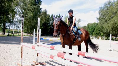 Eine Frau reitet auf einem Pferd, das vor einem Hindernis steht.