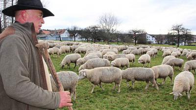 Eine besondere Verbindung: Wanderschäfer Herbert Schaible mit seiner Herde auf der Straubenhardter Winterweide, hier a.m Ortsrand von Schwann
