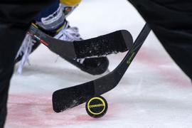Die Deutsche Eishockey Liga (DEL) hat den für den 13. November avisierten Saisonstart erneut verschoben.