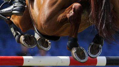 In Deutschland sind bereits zwei Pferde nach einer Infektion mit einer neuen Herpes-Variante gestorben.