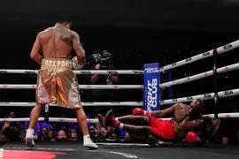 Ex-Schwergewichts-Champion Evander Holyfield (r) geht zu Boden.
